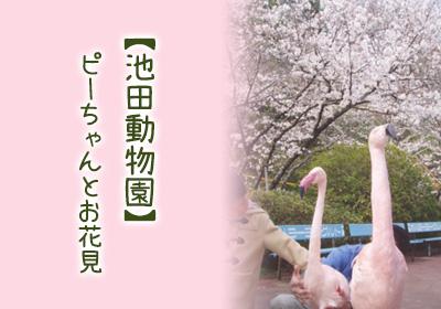 池田動物園