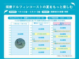 須磨ドルフィンコーストプロジェクト2016-01