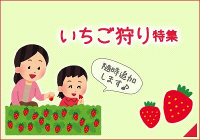 いちご狩り特集(岡山)