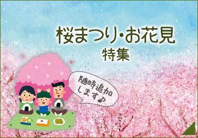 2018お花見特集