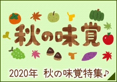 2020年 秋の味覚特集